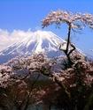 10 тысяч туристов смогут посетить Японию на халяву
