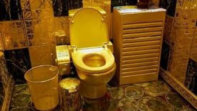 Администрация дагестанского села заказала туалет за 25 тысяч долларов