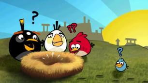 Герой игры Angry Birds полетит в космос