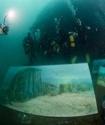 Украинский художник придумал способ подводой живописи