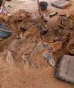 В Сирте обнаружили тела 267 сторонников Каддафи