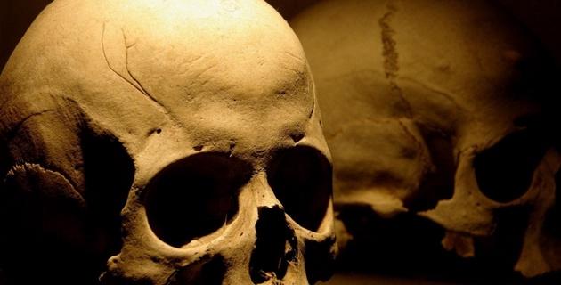 Житель Нижнего Новгорода коллекционировал скелеты людей