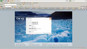 Bing составил топ-10 самых разыскивиемых в Интернете звезд