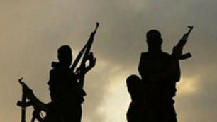 Спецслужбы СНГ обеспокоены формированием экстремистского подполья в ЦА