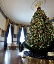 Новогодняя елка в доме оказалась опасной для здоровья