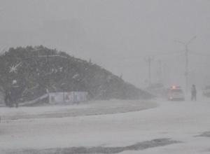 Ветер оставил жителей Сахалина без новогодней елки