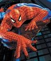Игра в человека-паука закончилась для первоклассника смертью