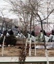 Журналистам запретили вести съемку в суде по делу о беспорядках в Жанаозене