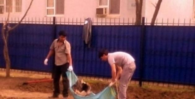 Использование флага Казахстана для выноса мусора обернулось уголовным делом